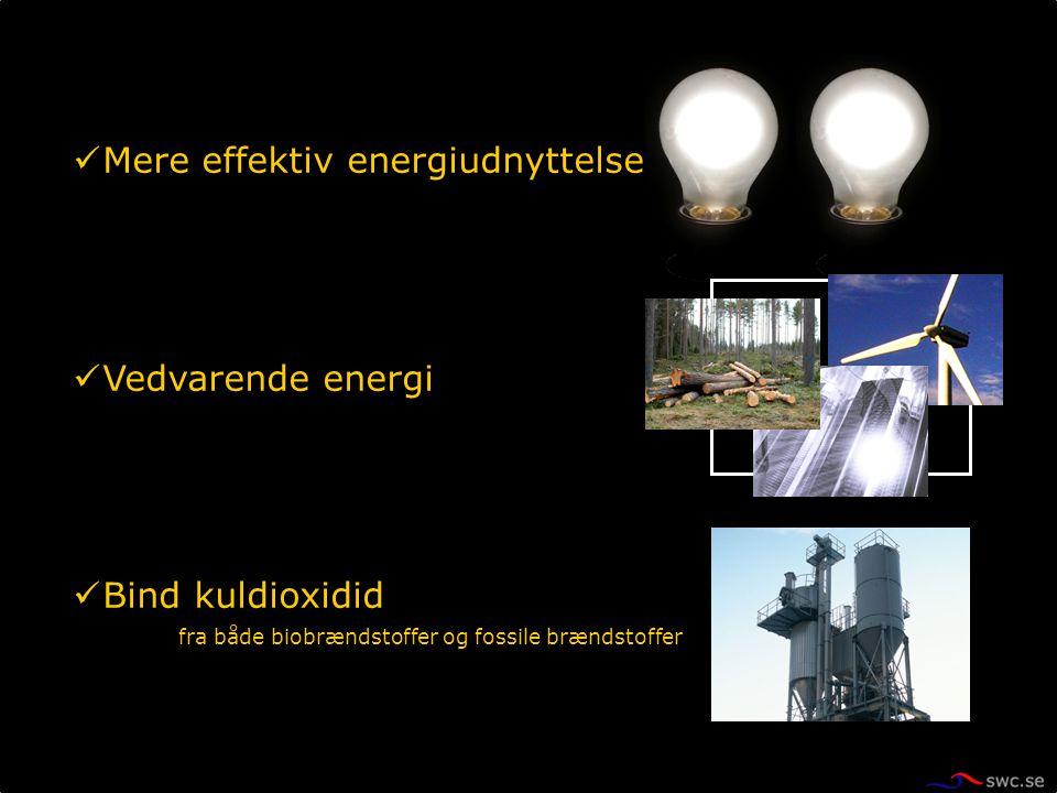 Mere effektiv energiudnyttelse Vedvarende energi Bind kuldioxidid fra både biobrændstoffer og fossile brændstoffer
