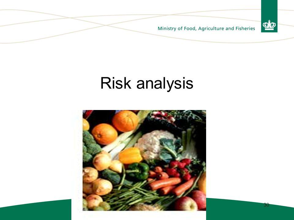 30 Risk analysis
