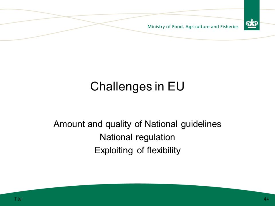 Challenges in EU Amount and quality of National guidelines National regulation Exploiting of flexibility Titel44
