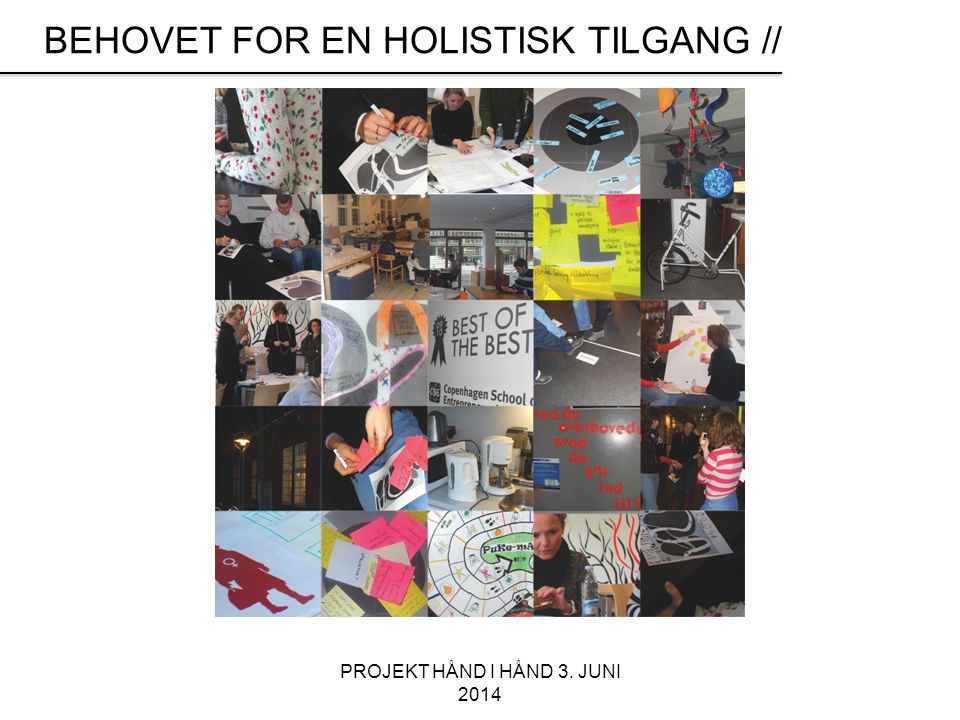 BEHOVET FOR EN HOLISTISK TILGANG //