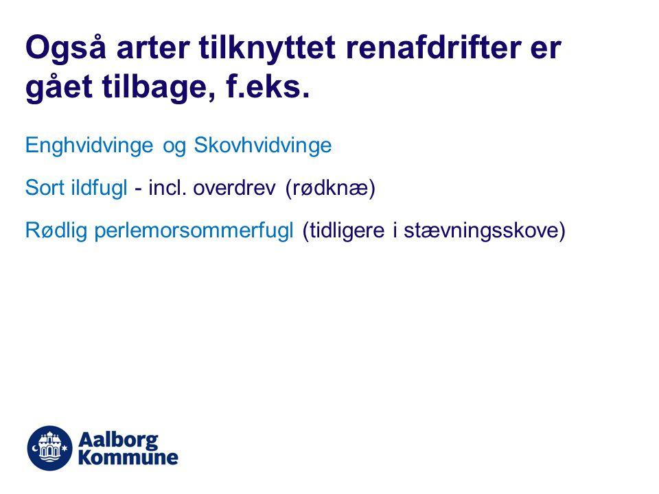 Enghvidvinge og Skovhvidvinge Sort ildfugl - incl.