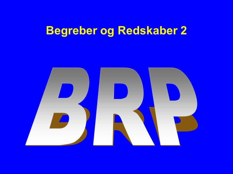 Begreber og Redskaber 2