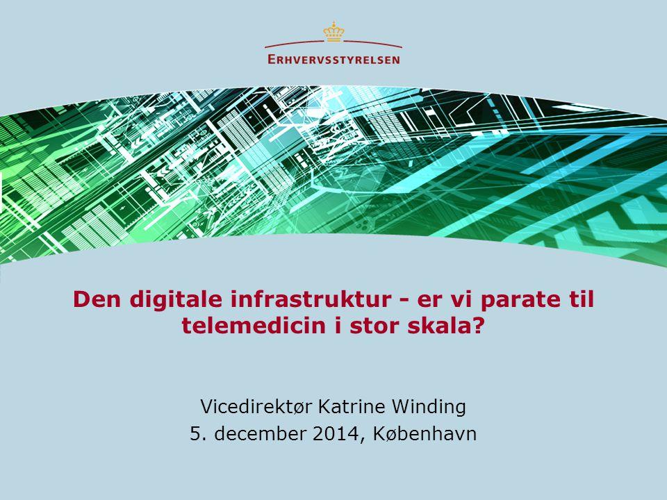Den digitale infrastruktur - er vi parate til telemedicin i stor skala.