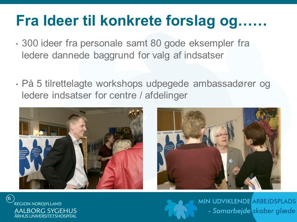 Fra Ideer til konkrete forslag og…… 300 ideer fra personale samt 80 gode eksempler fra ledere dannede baggrund for valg af indsatser På 5 tilrettelagte workshops udpegede ambassadører og ledere indsatser for centre / afdelinger
