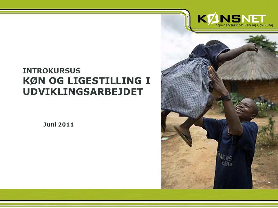 INTROKURSUS KØN OG LIGESTILLING I UDVIKLINGSARBEJDET Juni 2011