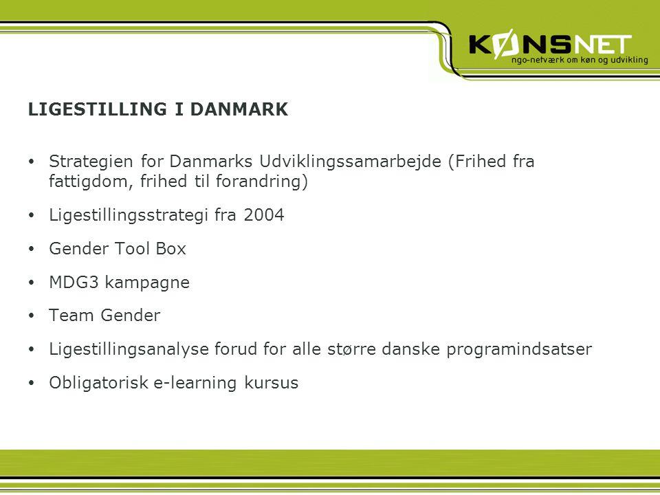 LIGESTILLING I DANMARK  Strategien for Danmarks Udviklingssamarbejde (Frihed fra fattigdom, frihed til forandring)  Ligestillingsstrategi fra 2004  Gender Tool Box  MDG3 kampagne  Team Gender  Ligestillingsanalyse forud for alle større danske programindsatser  Obligatorisk e-learning kursus