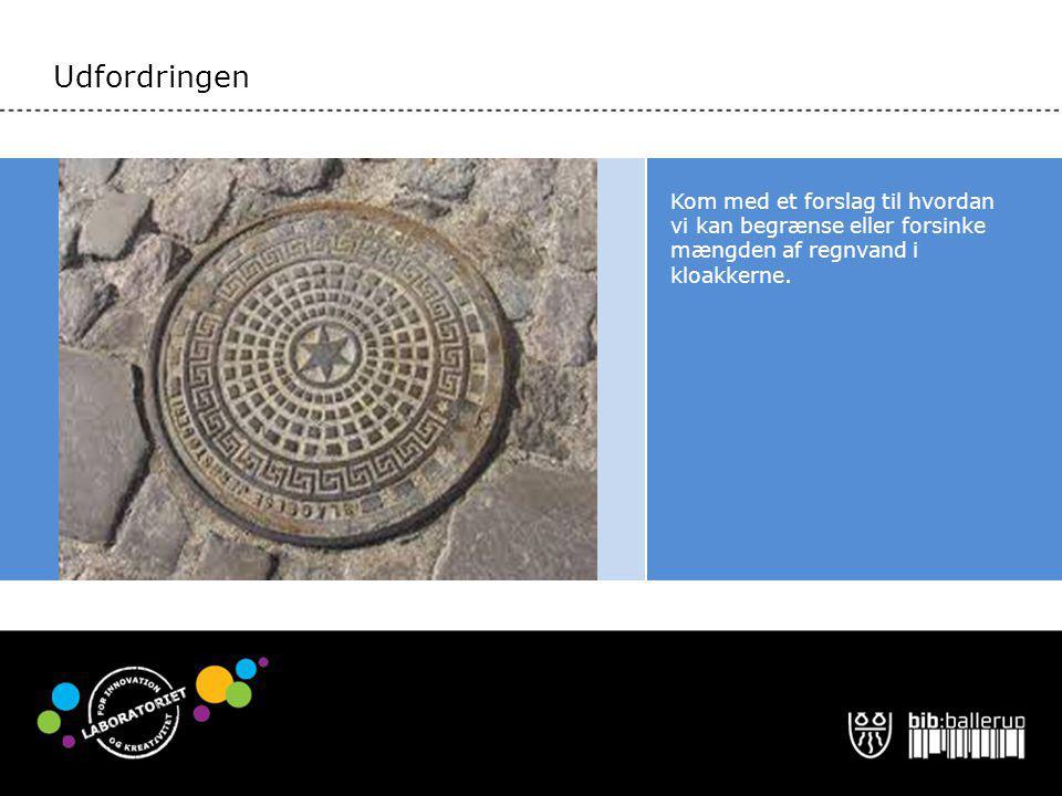 Udfordringen Kom med et forslag til hvordan vi kan begrænse eller forsinke mængden af regnvand i kloakkerne.