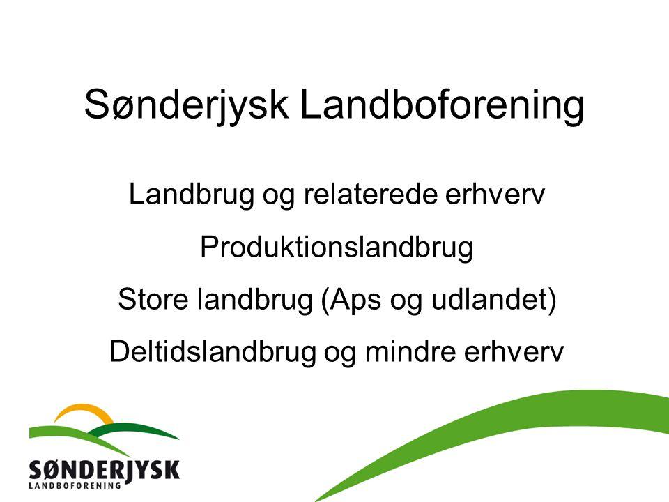 Sønderjysk Landboforening Landbrug og relaterede erhverv Produktionslandbrug Store landbrug (Aps og udlandet) Deltidslandbrug og mindre erhverv