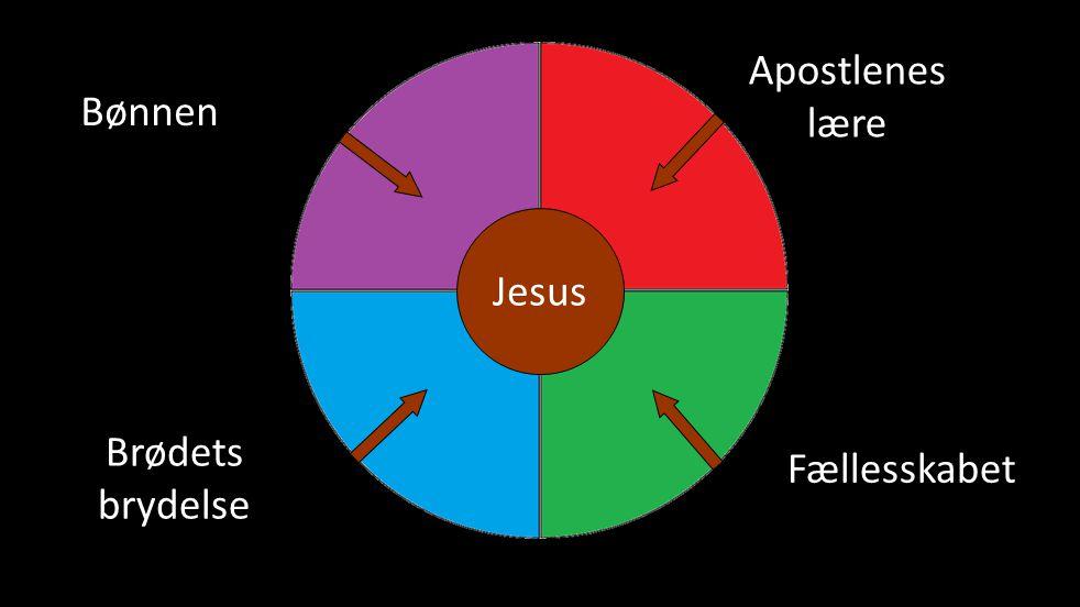 Apostlenes lære Jesus Bønnen Fællesskabet Brødets brydelse