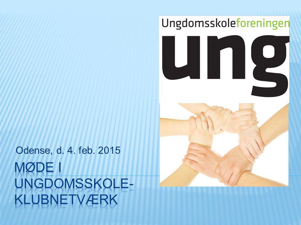 Odense, d. 4. feb. 2015