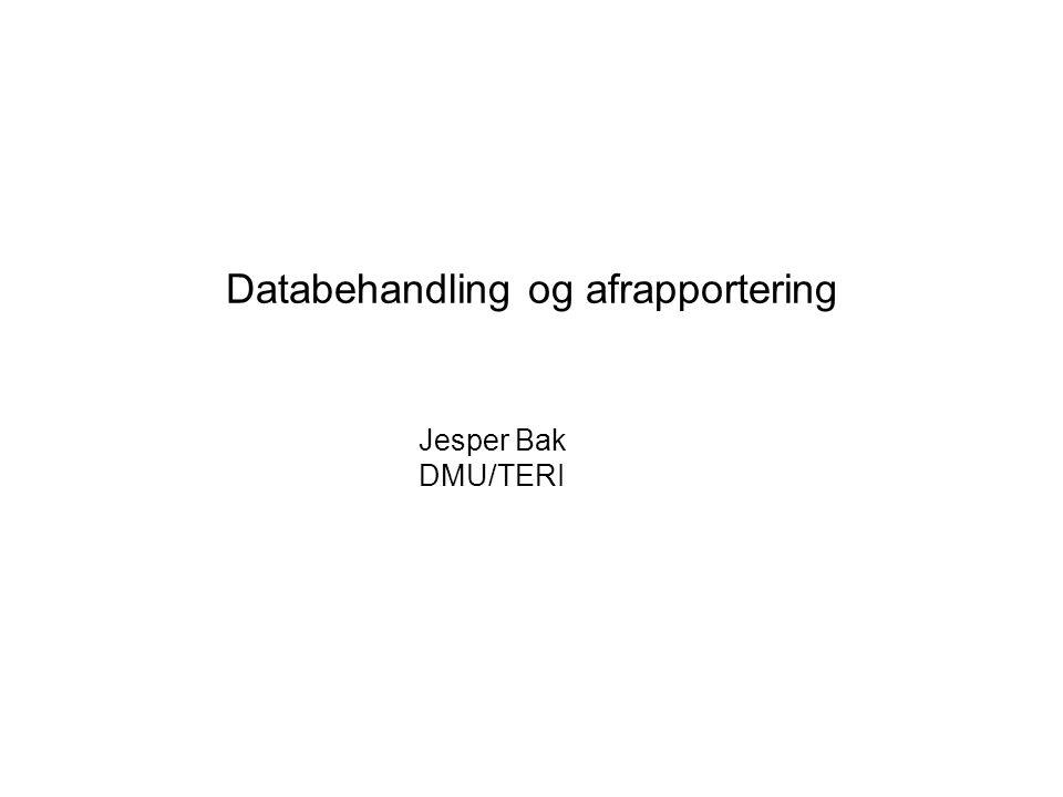 Databehandling og afrapportering Jesper Bak DMU/TERI