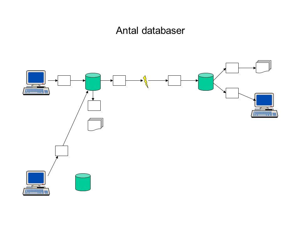 Antal databaser