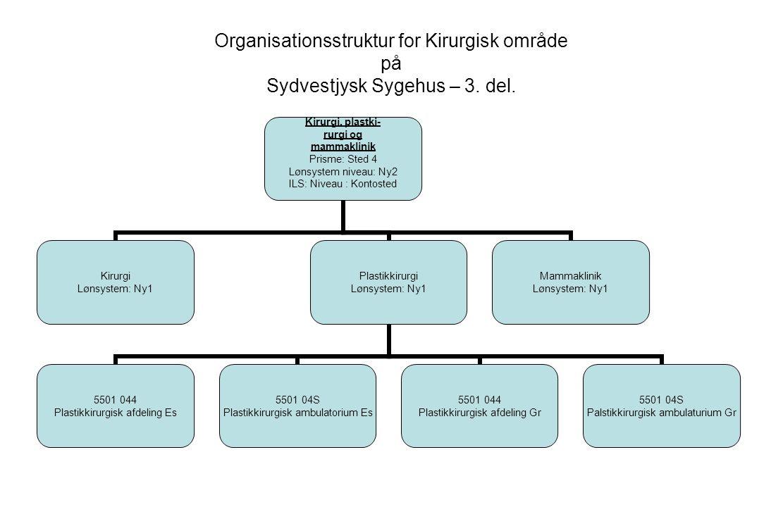 Organisationsstruktur for Kirurgisk område på Sydvestjysk Sygehus – 3.