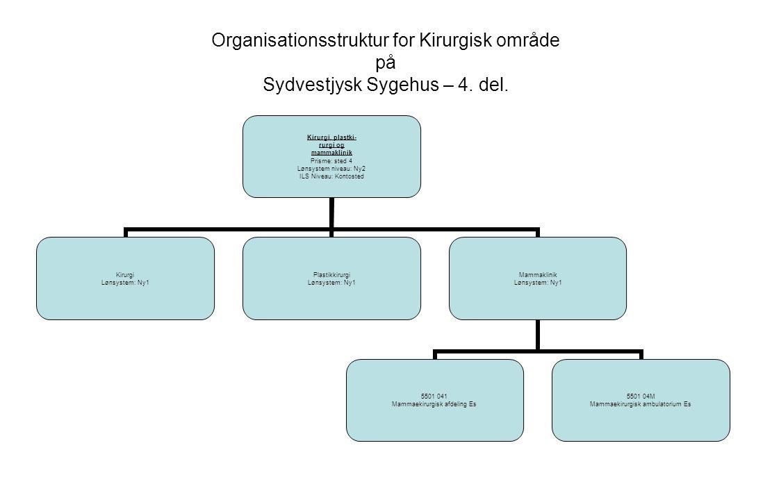 Organisationsstruktur for Kirurgisk område på Sydvestjysk Sygehus – 4.