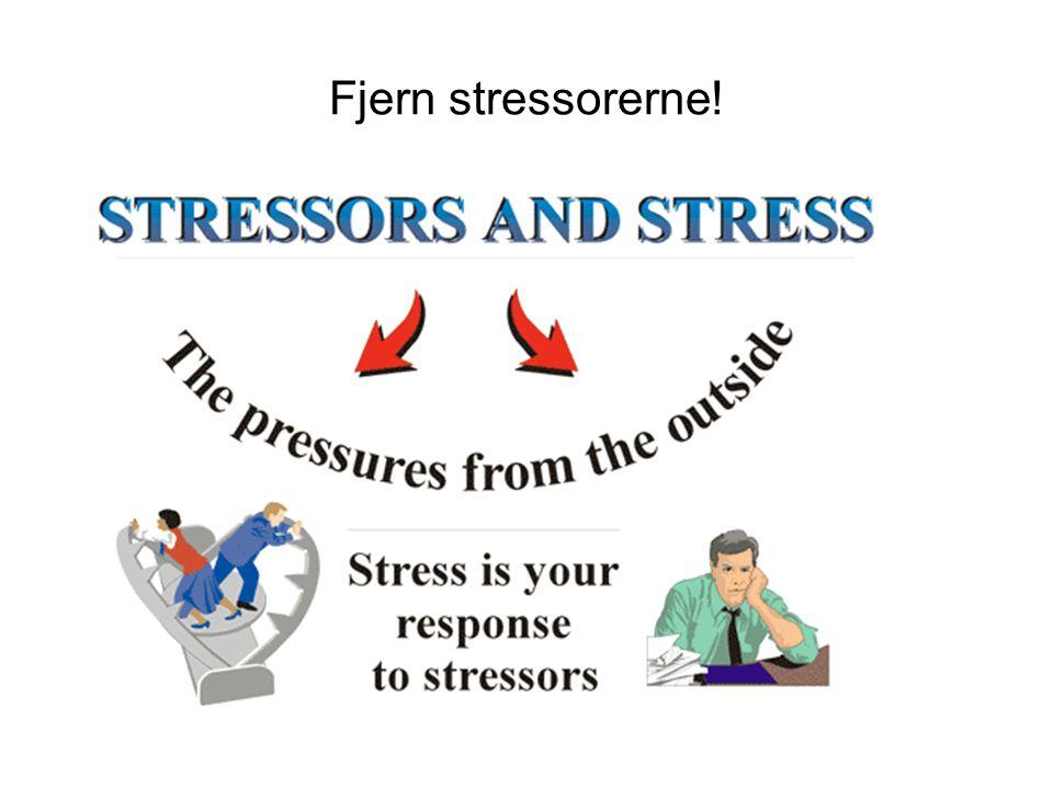 Fjern stressorerne!