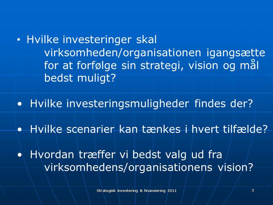3 Hvilke investeringer skal virksomheden/organisationen igangsætte for at forfølge sin strategi, vision og mål bedst muligt.