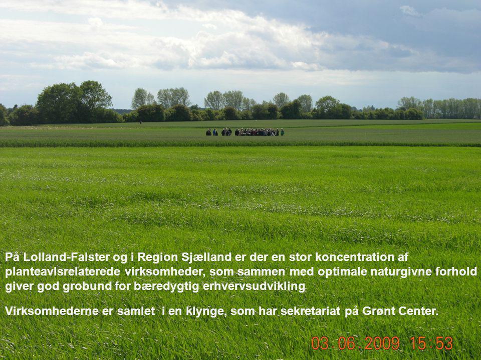 På Lolland-Falster og i Region Sjælland er der en stor koncentration af planteavlsrelaterede virksomheder, som sammen med optimale naturgivne forhold giver god grobund for bæredygtig erhvervsudvikling Virksomhederne er samlet i en klynge, som har sekretariat på Grønt Center.