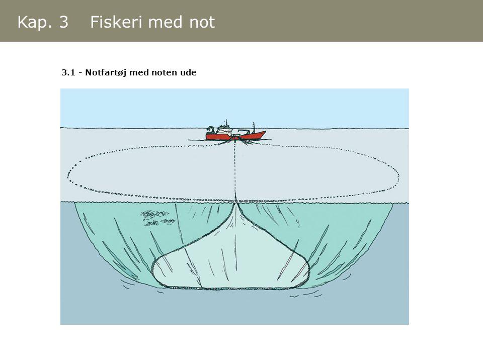 3.1 - Notfartøj med noten ude Kap. 3 Fiskeri med not