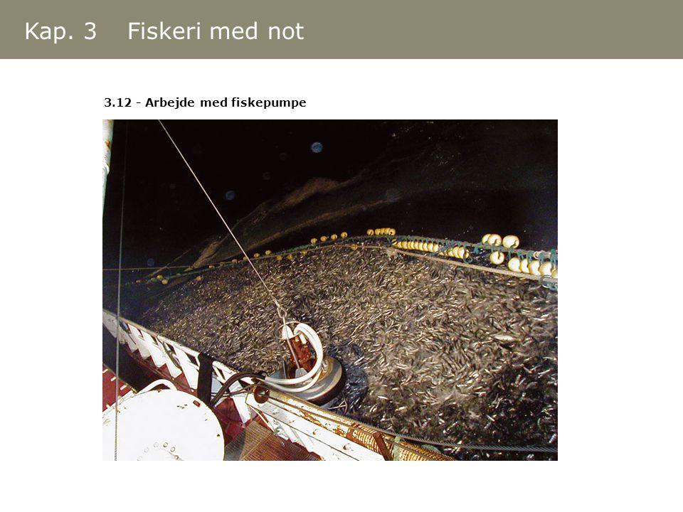 3.12 - Arbejde med fiskepumpe Kap. 3 Fiskeri med not