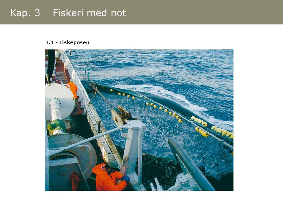 3.4 - Fiskeposen Kap. 3 Fiskeri med not