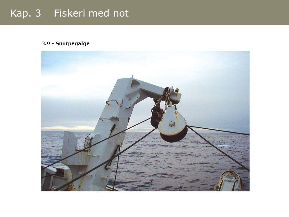 3.9 - Snurpegalge Kap. 3 Fiskeri med not