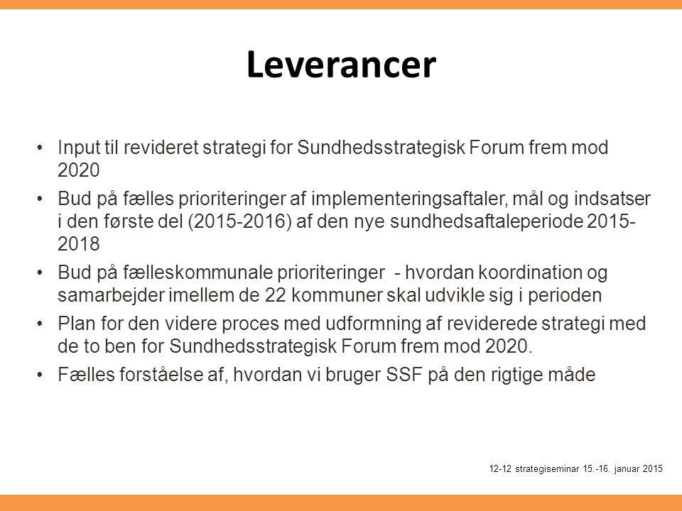 Leverancer 12-12 strategiseminar 15.-16.