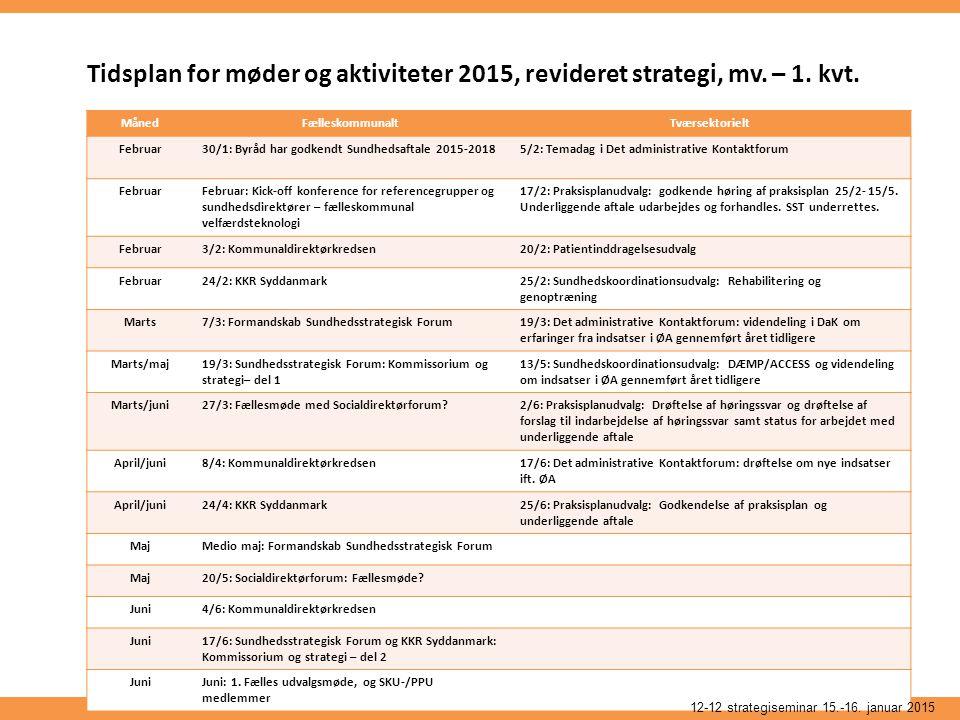 Tidsplan for møder og aktiviteter 2015, revideret strategi, mv.