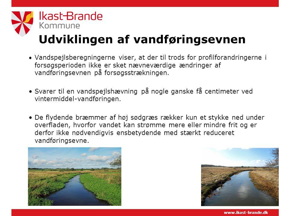 www.ikast-brande.dk Udviklingen af vandføringsevnen  Vandspejlsberegningerne viser, at der til trods for profilforandringerne i forsøgsperioden ikke er sket nævneværdige ændringer af vandføringsevnen på forsøgsstrækningen.