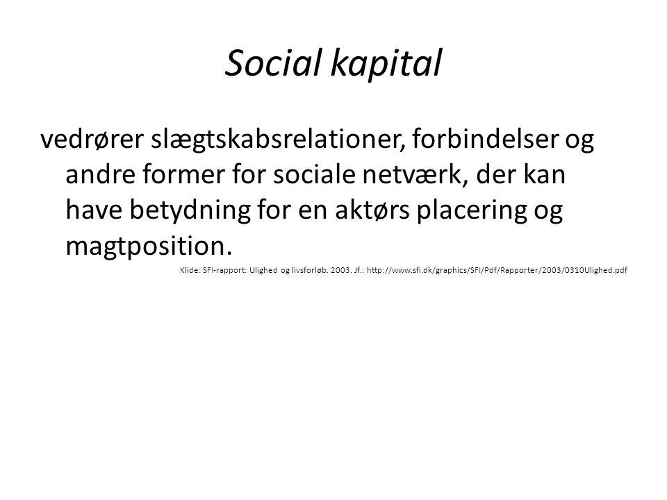 Social kapital vedrører slægtskabsrelationer, forbindelser og andre former for sociale netværk, der kan have betydning for en aktørs placering og magt