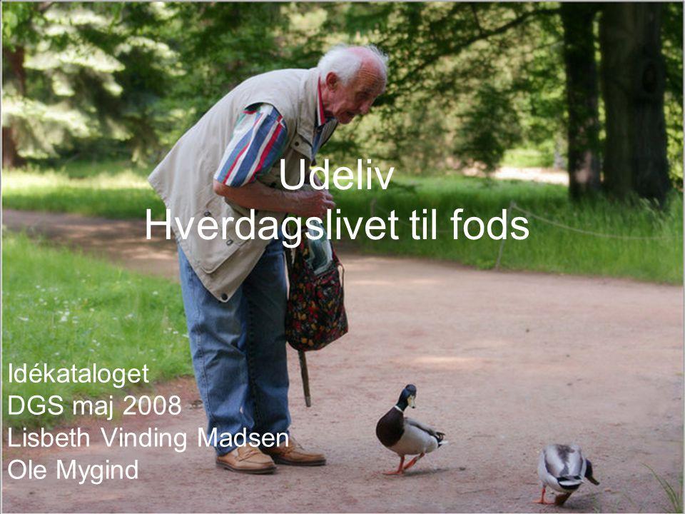 Udeliv Hverdagslivet til fods Idékataloget DGS maj 2008 Lisbeth Vinding Madsen Ole Mygind