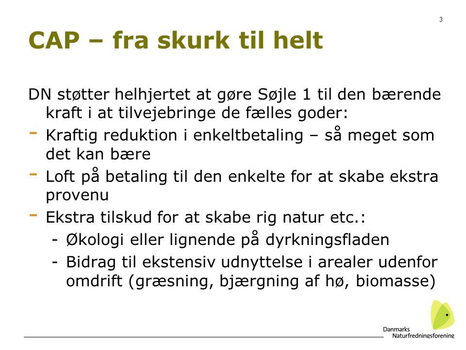 3 CAP – fra skurk til helt DN støtter helhjertet at gøre Søjle 1 til den bærende kraft i at tilvejebringe de fælles goder: - Kraftig reduktion i enkeltbetaling – så meget som det kan bære - Loft på betaling til den enkelte for at skabe ekstra provenu - Ekstra tilskud for at skabe rig natur etc.: -Økologi eller lignende på dyrkningsfladen -Bidrag til ekstensiv udnyttelse i arealer udenfor omdrift (græsning, bjærgning af hø, biomasse)