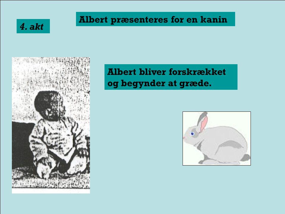 Albert præsenteres for en rotte 3. akt Albert bliver forskrækket og begynder at græde.