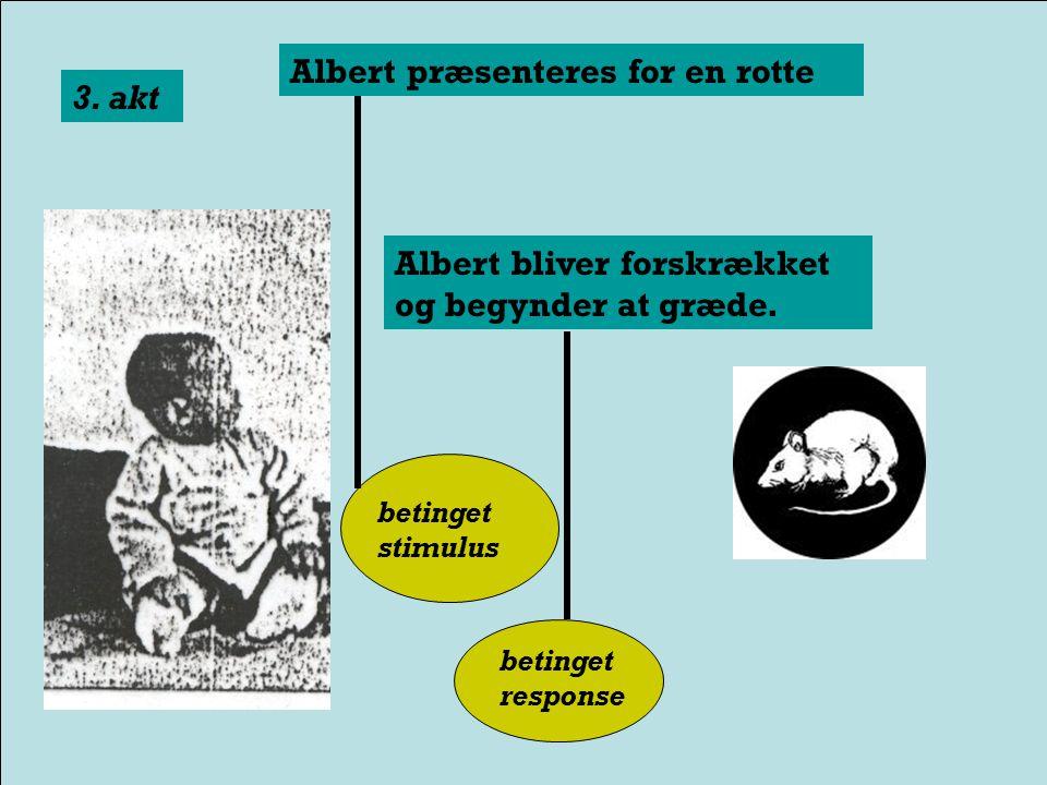 Albert præsenteres for en rotte Hvorefter der kommer en høj lyd 2.