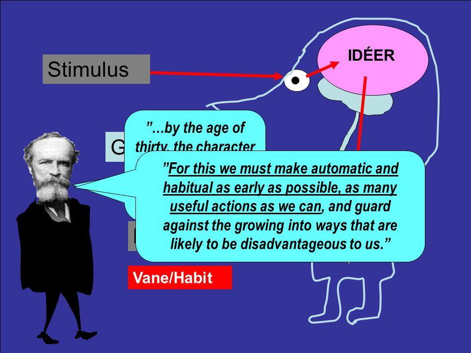 Stimulus IDÉER Bevidstheden som darwinistisk funktion Respons I Amerika er det resultatet, der tæller.