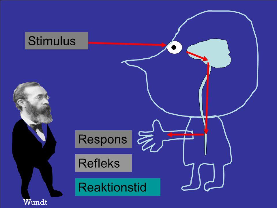 Stimulus Respons Refleks Reaktionstid Helmholtz