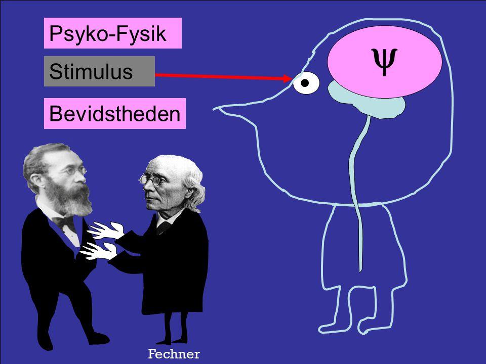 Stimulus Respons Refleks Reaktionstid Wundt