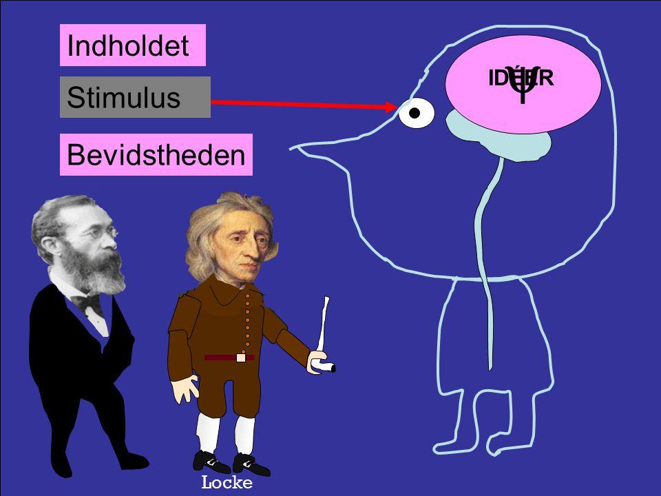 Stimulus  Psyko-Fysik OplevelsenBevidstheden Fechner