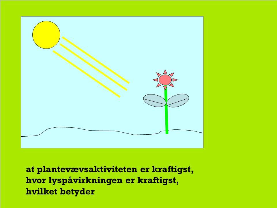 Solens stråler påvirker cellernes kemiske processer, således