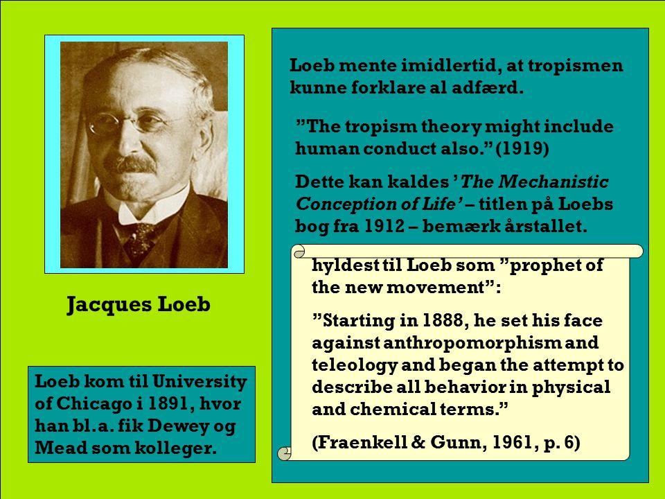 Loeb mente imidlertid, at tropismen kunne forklare al adfærd.