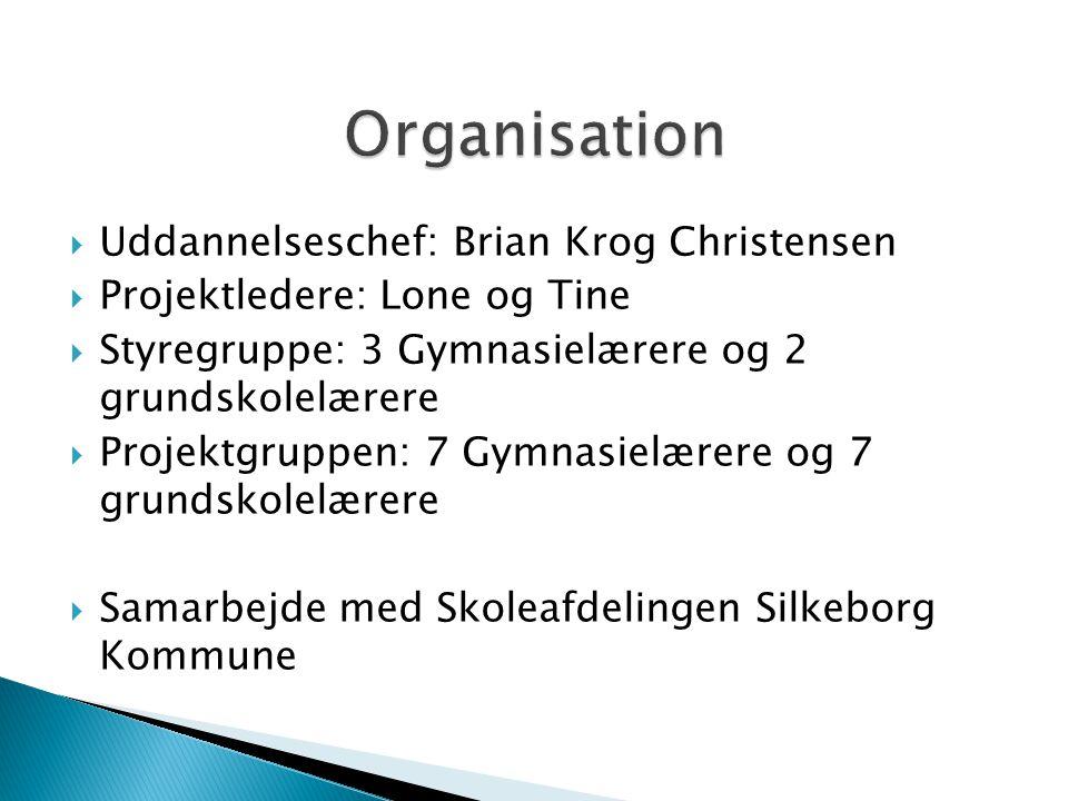  Uddannelseschef: Brian Krog Christensen  Projektledere: Lone og Tine  Styregruppe: 3 Gymnasielærere og 2 grundskolelærere  Projektgruppen: 7 Gymnasielærere og 7 grundskolelærere  Samarbejde med Skoleafdelingen Silkeborg Kommune
