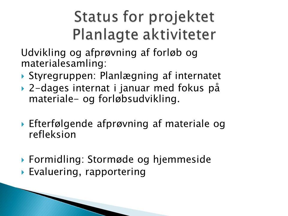 Udvikling og afprøvning af forløb og materialesamling:  Styregruppen: Planlægning af internatet  2-dages internat i januar med fokus på materiale- og forløbsudvikling.