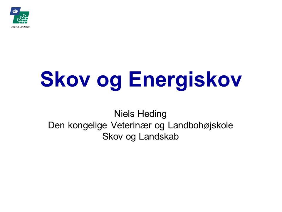 Skov og Energiskov Niels Heding Den kongelige Veterinær og Landbohøjskole Skov og Landskab