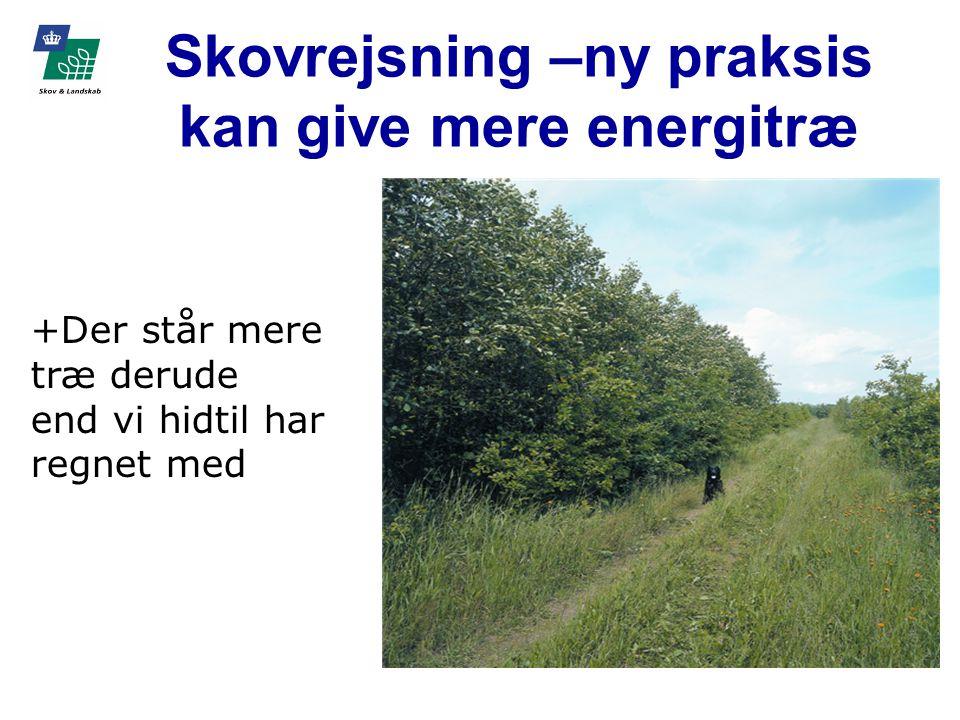 Skovrejsning –ny praksis kan give mere energitræ +Der står mere træ derude end vi hidtil har regnet med