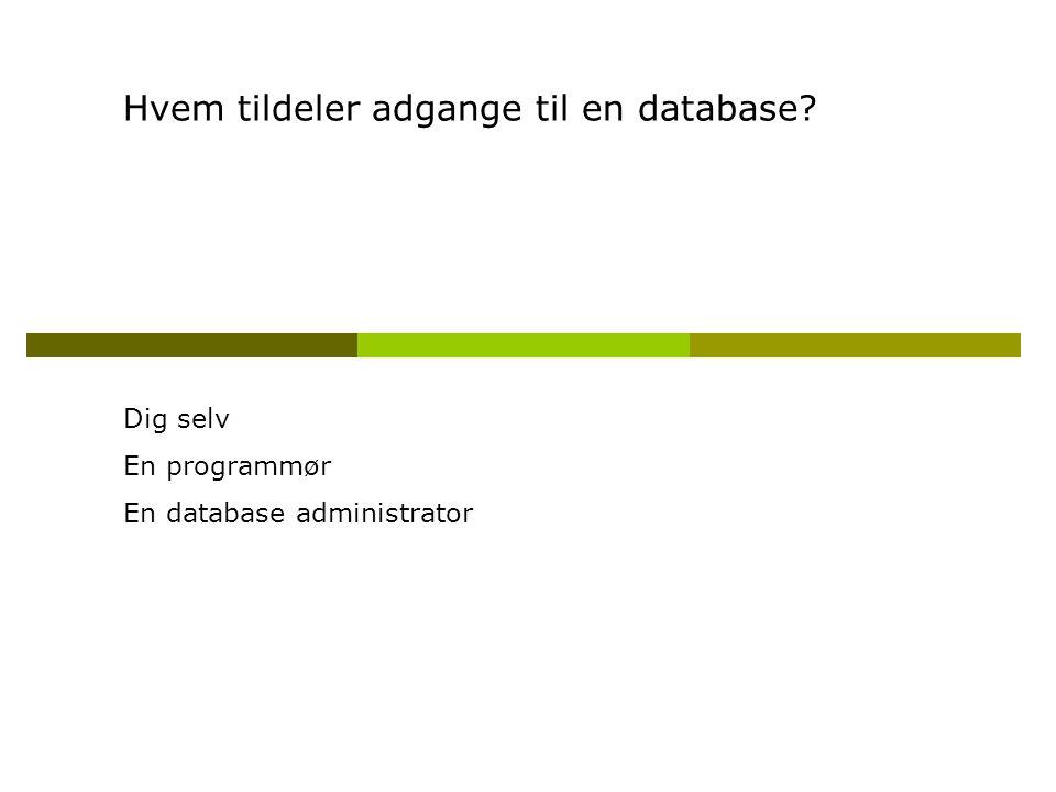 Hvem tildeler adgange til en database Dig selv En programmør En database administrator