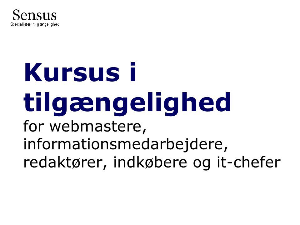 Kursus i tilgængelighed for webmastere, informationsmedarbejdere, redaktører, indkøbere og it-chefer