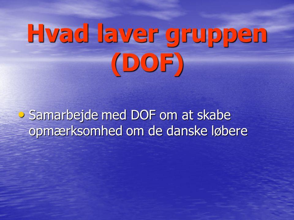 Hvad laver gruppen (DOF) Samarbejde med DOF om at skabe opmærksomhed om de danske løbere Samarbejde med DOF om at skabe opmærksomhed om de danske løbere