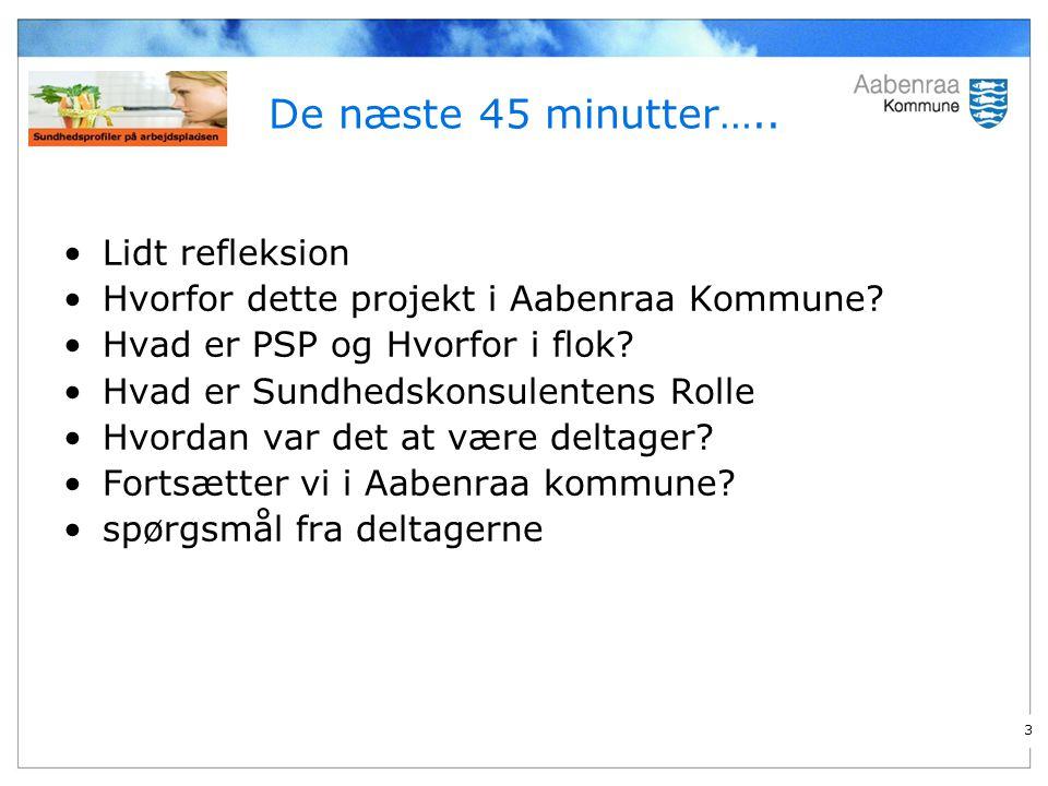 3 De næste 45 minutter….. Lidt refleksion Hvorfor dette projekt i Aabenraa Kommune.