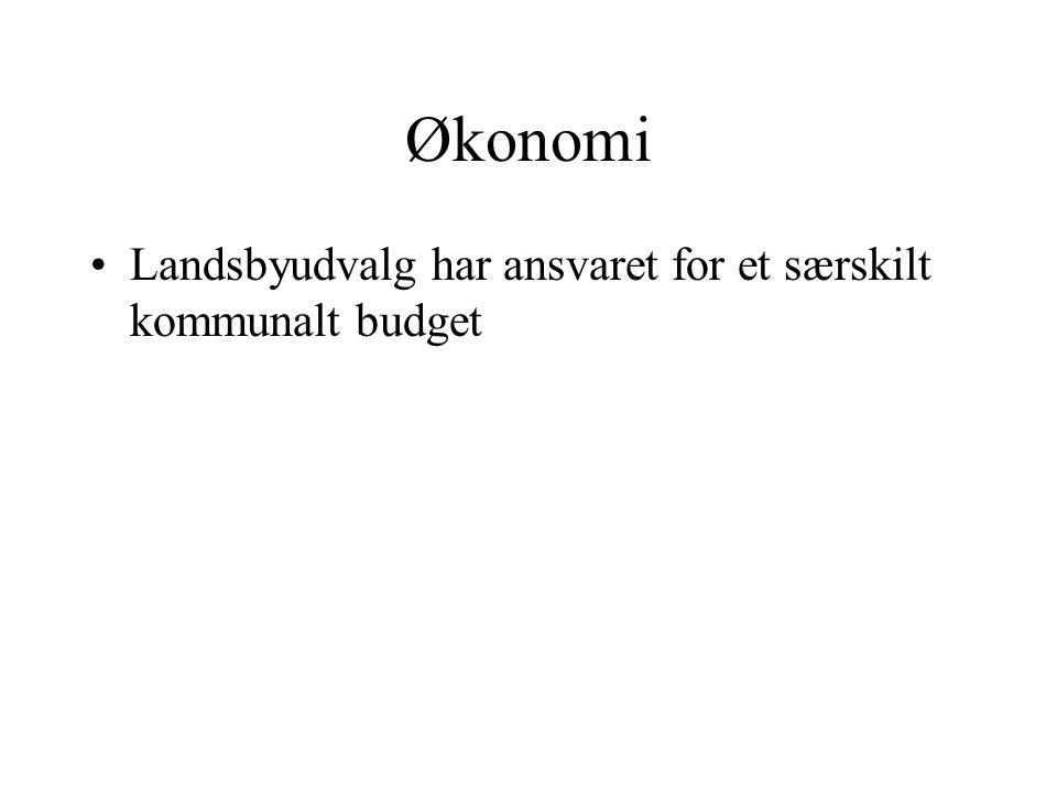 Økonomi Landsbyudvalg har ansvaret for et særskilt kommunalt budget