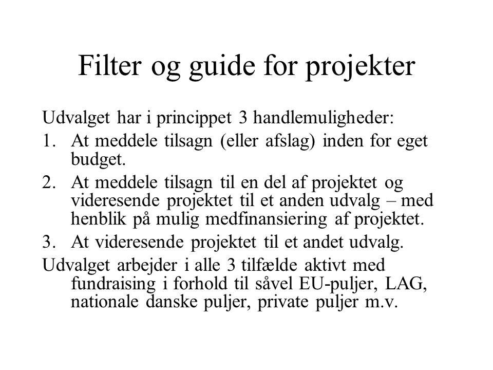 Filter og guide for projekter Udvalget har i princippet 3 handlemuligheder: 1.At meddele tilsagn (eller afslag) inden for eget budget.