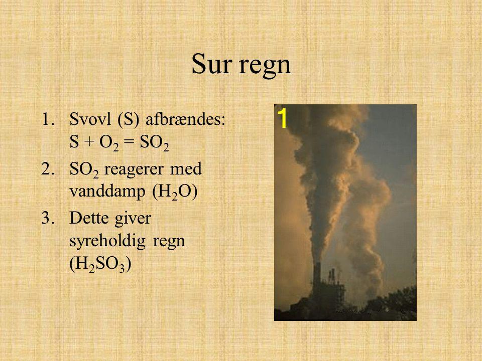 Sur regn 1.Svovl (S) afbrændes: S + O 2 = SO 2 2.SO 2 reagerer med vanddamp (H 2 O) 3.Dette giver syreholdig regn (H 2 SO 3 )